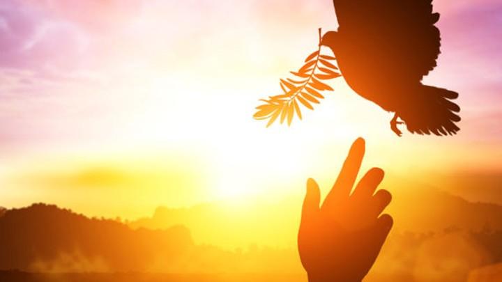 أين نجد الخير الحقيقيّ والسّلام؟