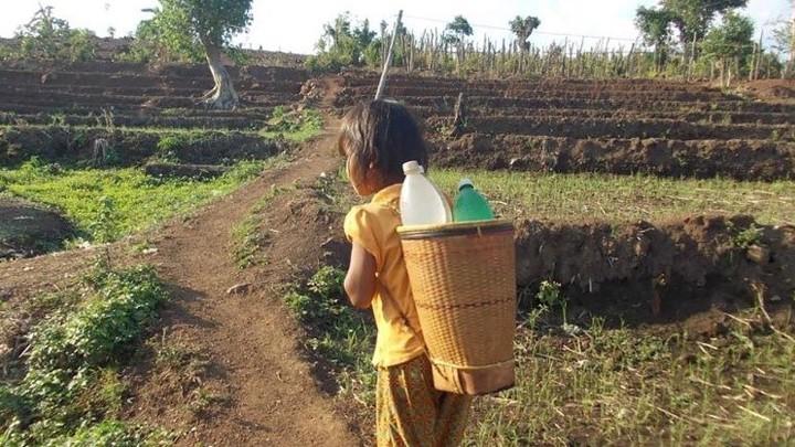 الكرسيّ الرّسوليّ: لضمان حقّ جميع البشر في الحصول على المياه